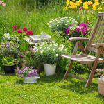 Ein Garten – auch für Allergiker möglich?