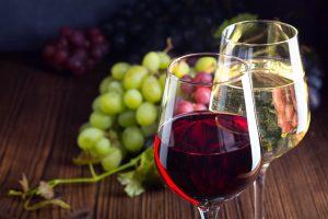 Biowein: Was Sie über ökologischen Weinbau unbedingt wissen sollten