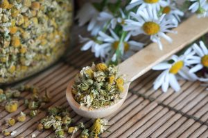 Kamille gegen Magenschmerzen
