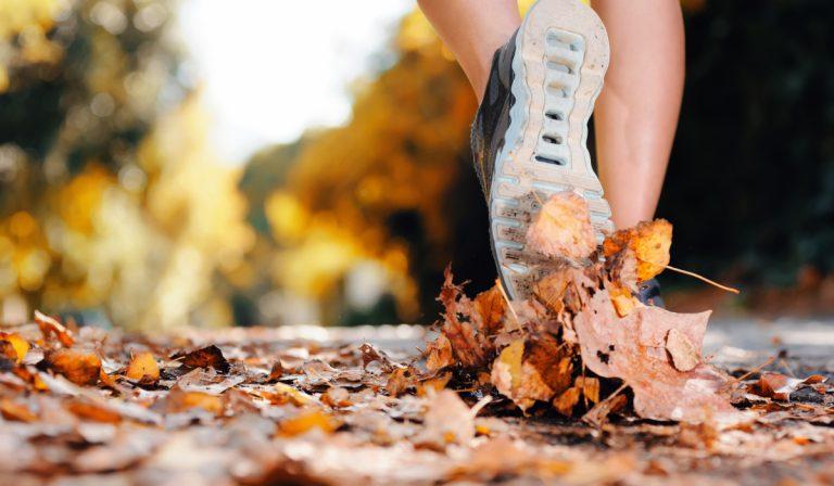 Jogging im Herbst – nur mit der richtigen Kleidung