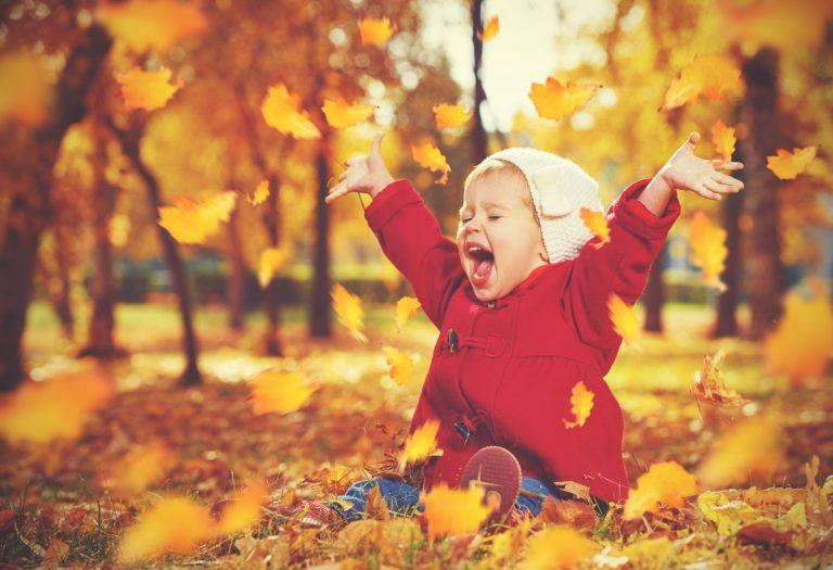 Mit Kindern einen spannenden Herbst erleben