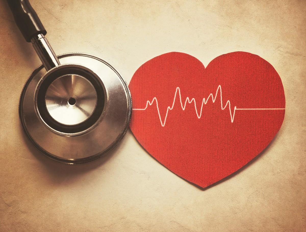 Herz: Dem plötzlichen Herztod auf der Spur