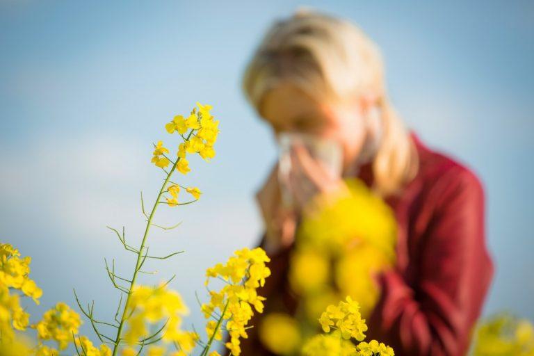 Homöopathie gegen Heuschnupfen