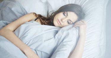 Wunderbäume: Gerüche können gegen Sekundenschlaf helfen