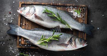 Frischer Fisch: Tipps für den Einkauf von frischer Qualität (Teil 1)