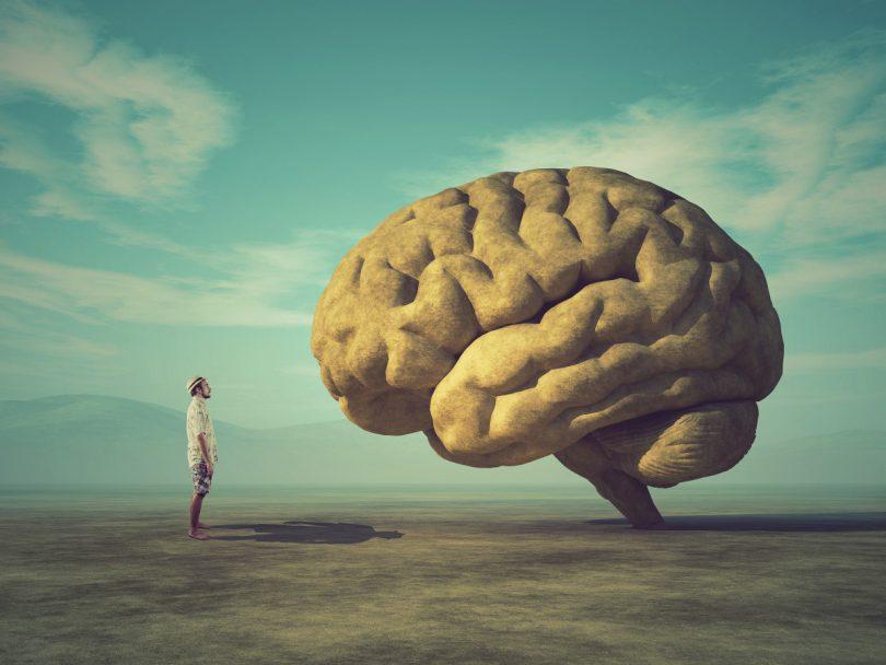 Übungen für Ihr Gehirn
