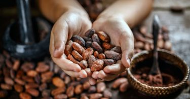 Kakao stärkt das Herz