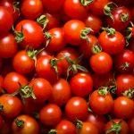 Tomaten optimal lagern: Darauf kommt es an!