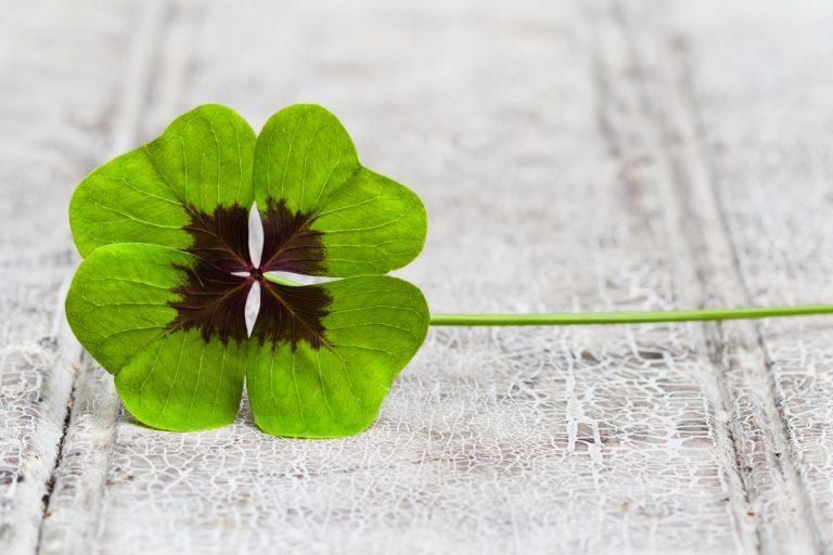 Glück: Wie setze ich Glück um?
