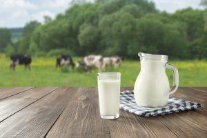 Kalorientabelle 1: Milchprodukte