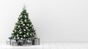Ursula Pelzl: Businessideen für Weihnachten