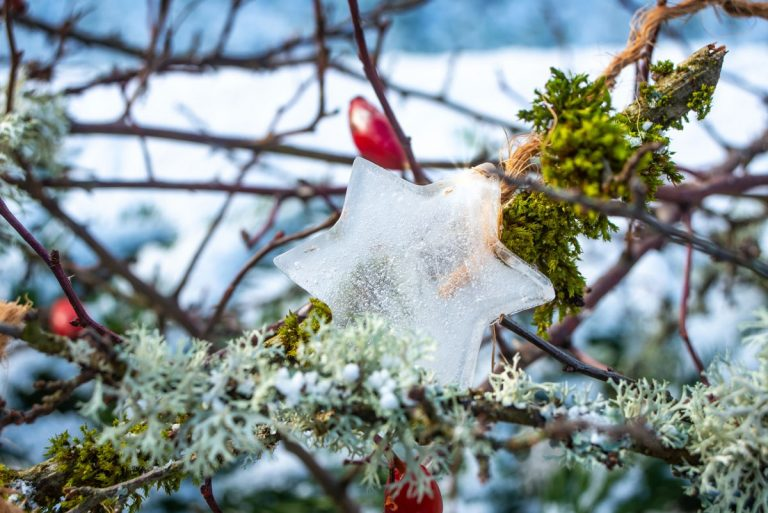 Basteln im Winter: Witzige Ast-Figuren