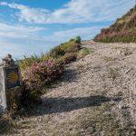 Der Jakobsweg: Selbstfindung und Suche nach dem Glück