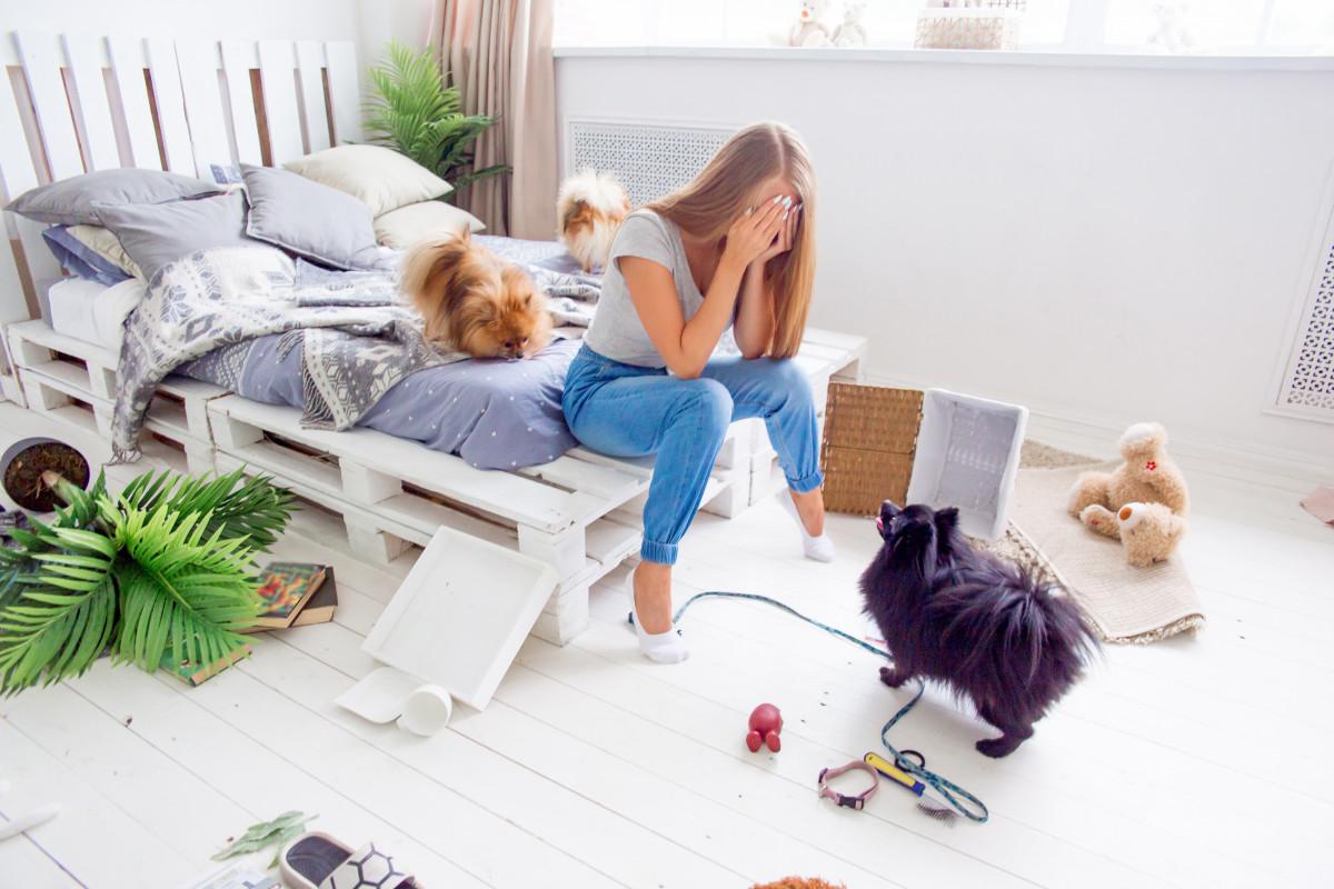 Wie Ihr Haustier Sie bei zuviel Stress unterstützt