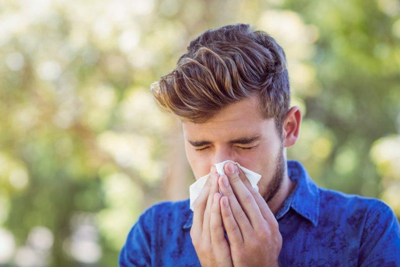 Heuschnupfen und Homöopathie: Allium Cepa als homöopathisches Heuschnupfen-Mittel