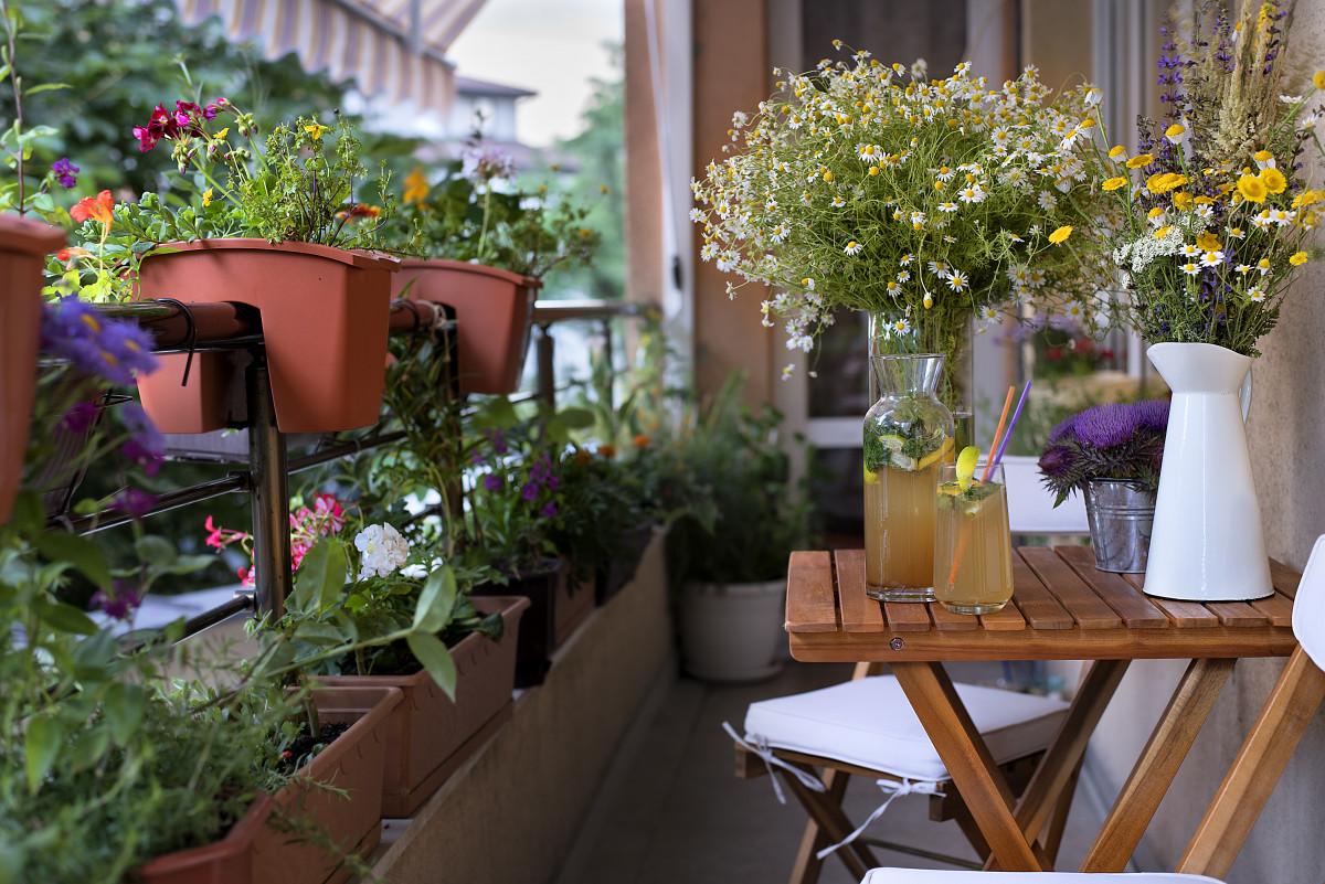 Balkon: Pflanzen mit Tradition