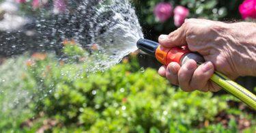 Gartenbewässerung: Von Regenfass bis Bewässerungssystem
