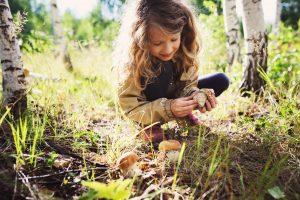 Kinder erleben den Wald mit allen Sinnen