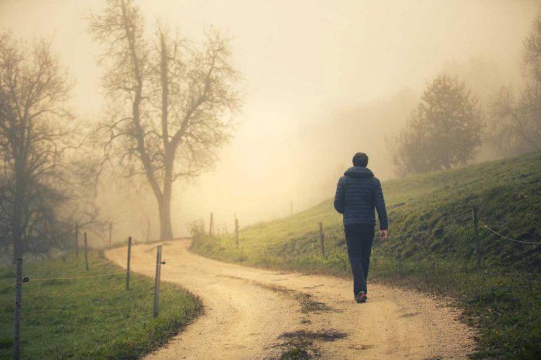 Typisch für den November: Nebel