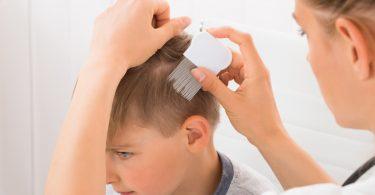 Kopfläuse: Wie sollten Eltern reagieren, wenn eine Ansteckung droht?