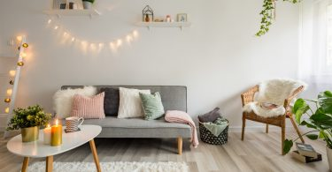 Zimmerpflanzen pflegen: So steigern Sie auch Ihr Wohlbefinden