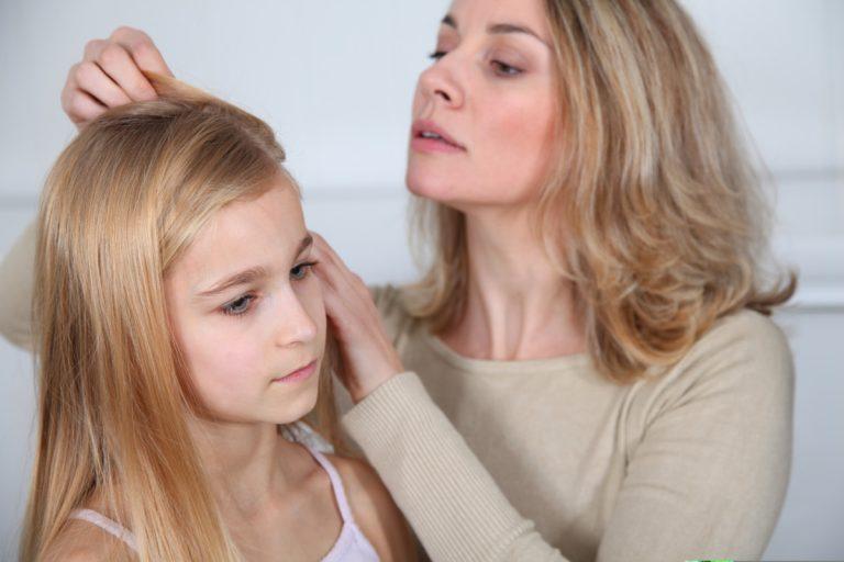Kopfläuse erkennen, behandeln und vorbeugen