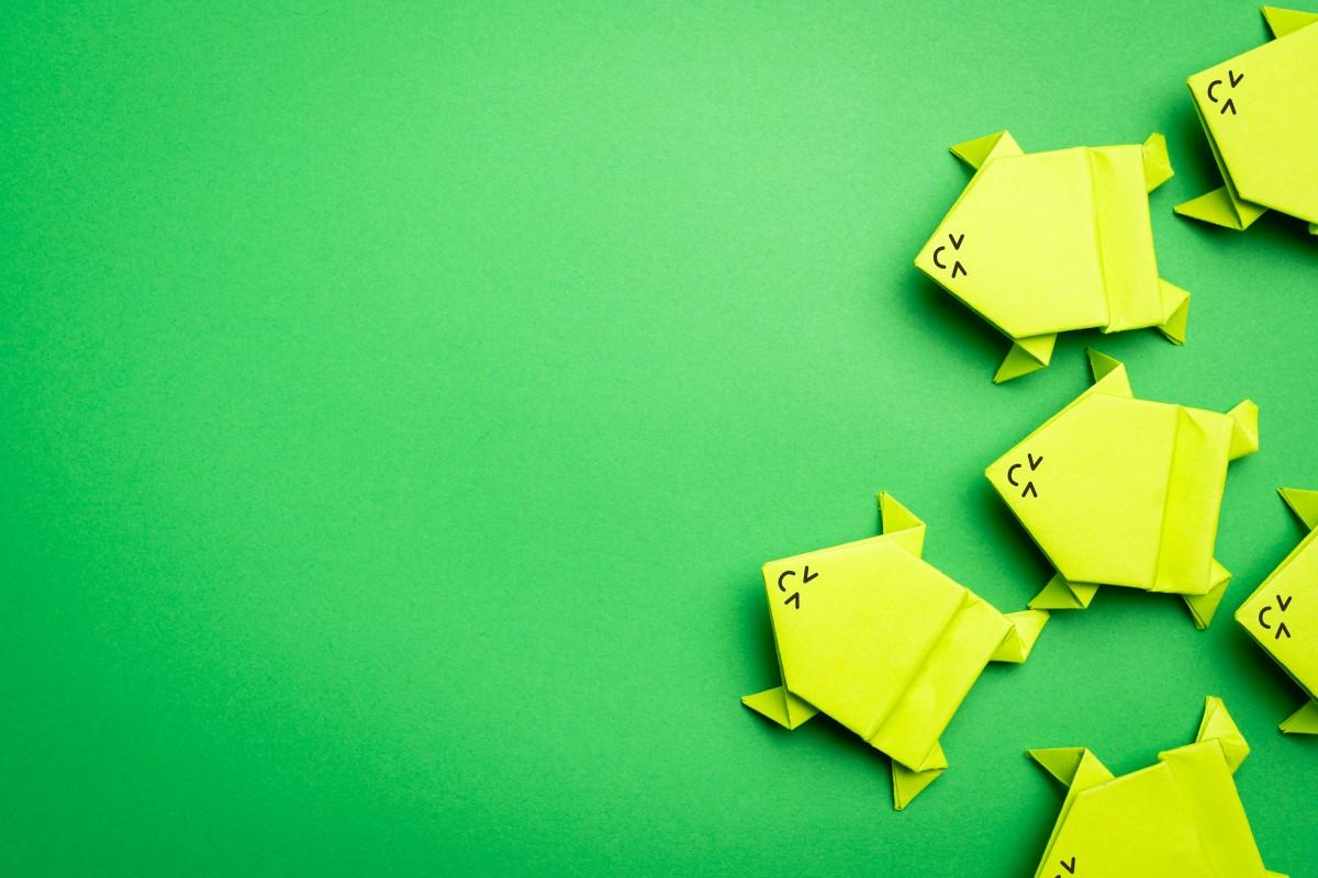 Origami Frosch oder eine Froschfamilie basteln (Teil 2)