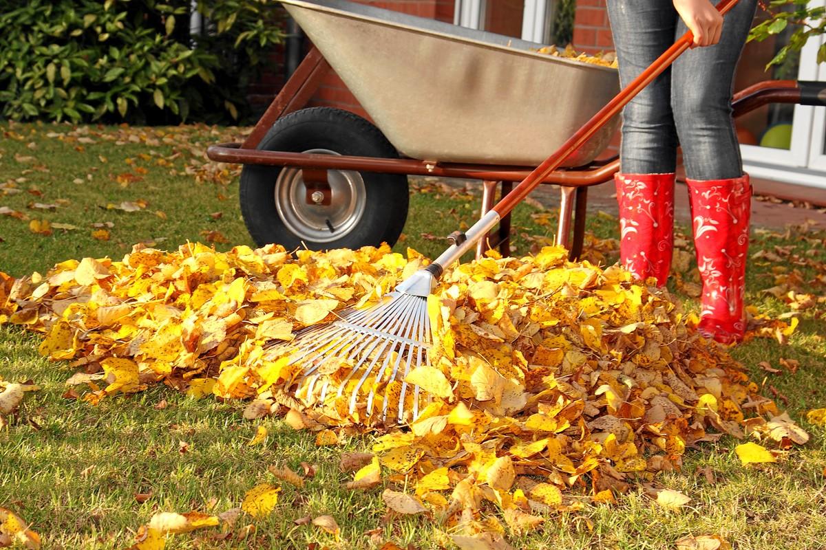 Gartenarbeiten im Herbst: Mit dieser Checkliste behalten Sie den Überblick