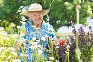 Gartentherapie: Der Therapeut ist mehr als ein gärtnernder Betreuer