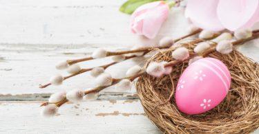 Dekoideen für Ostern: Wie Sie eine Deko für Ostern selber machen (Teil 1)