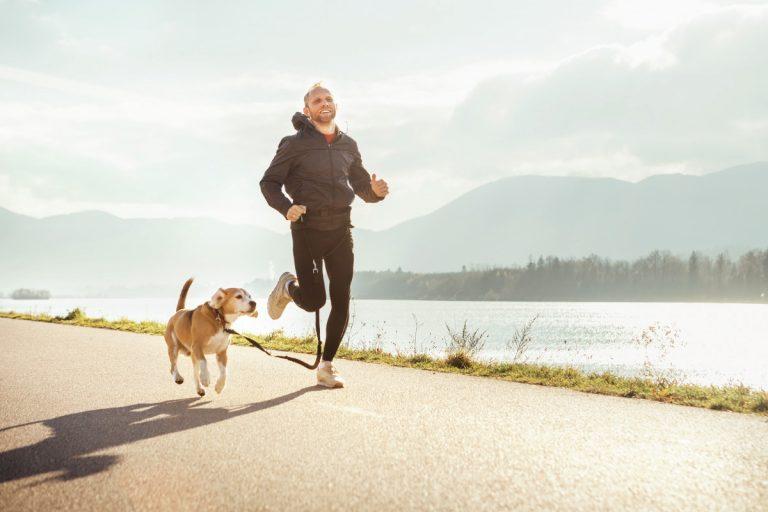 Studie: Mehr Bewegung dank Hund