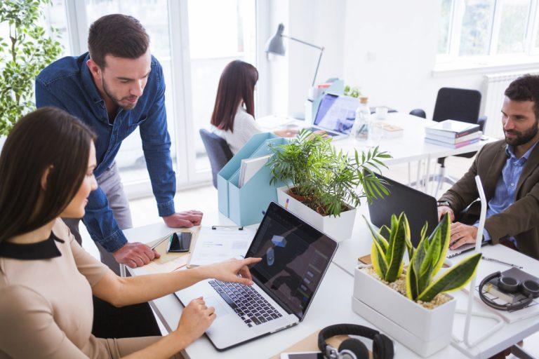 Für eine angenehme Büro-Atmosphäre: Büropflanzen