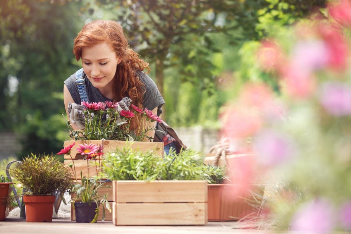 Gartenarbeit schützt vor Herzinfarkt