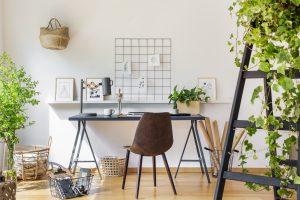 Wie Pflanzen im Büro das Wohlbefinden fördern