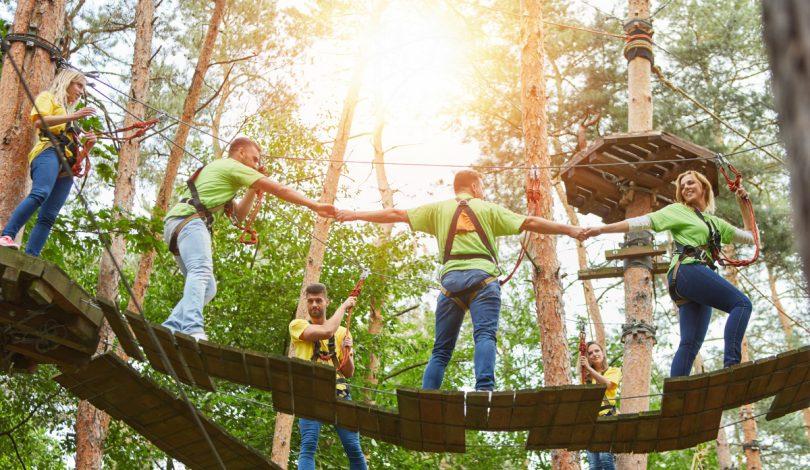 Erfolg durch Teambuilding im Hochseilgarten