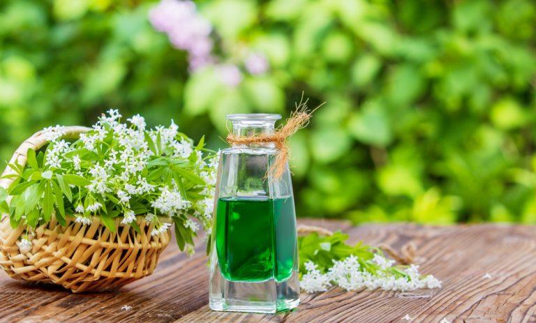 Rezepte mit Waldmeister: Ein erfrischendes Dufterlebnis!