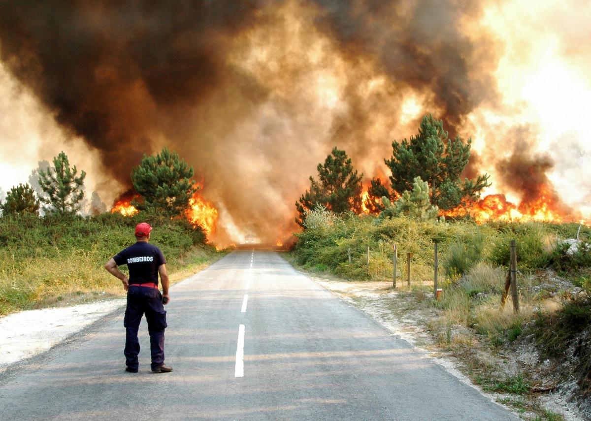 Richtiges Verhalten bei Waldbrand: Feuer melden