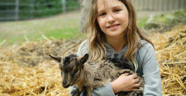 Ferien auf dem Bauernhof ohne Eltern verbringen