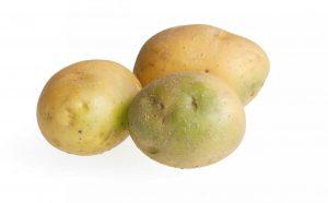 Vorsicht: Keine grünen Stellen an Kartoffeln verzehren!