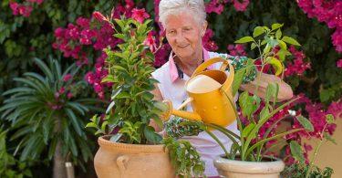 Gartentherapie für Demenzkranke