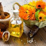 Heilpflanzen helfen gegen Durchfall