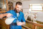 Alternativen zur Kuhmilch bei Verdauungsbeschwerden