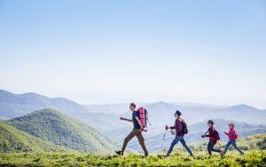 Wandern – Trendsport mit hohem Kalorienverbrauch