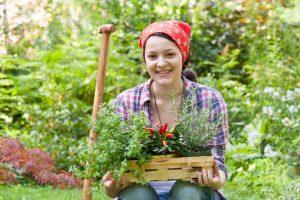 Kosmetik aus dem Garten selbst herstellen