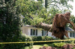 Unwetterschäden: Wann zahlt welche Versicherung?