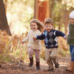 Der Wald ruft - Ein Erlebnis für Kinder
