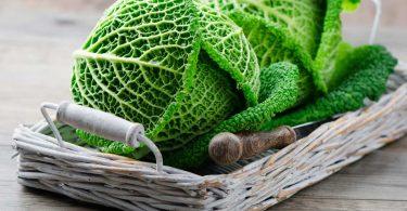 Kochen mit Wirsing - ein Gemüse nicht nur für den Winter