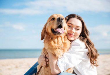 Drainage oder Entgiftung in der Tierhomöopathie einsetzen