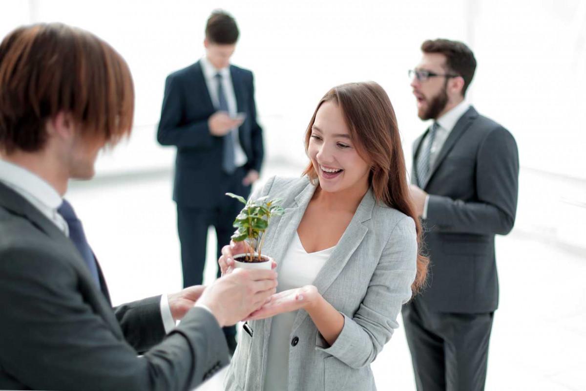 Green Business – der Trend für junge Unternehmen