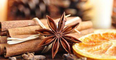 Orangen, Nelken und Zimt verströmen Weihnachtsstimmung